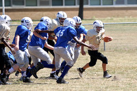 130922 Colts Stallions Football (16)