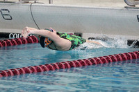 141115 Girls Swimming Sectionals 0018